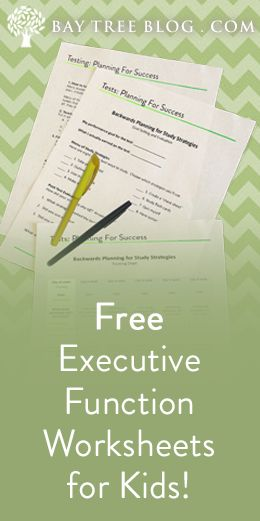 FREE Executive Function Worksheets for Kids! From BayTreeBlog.com