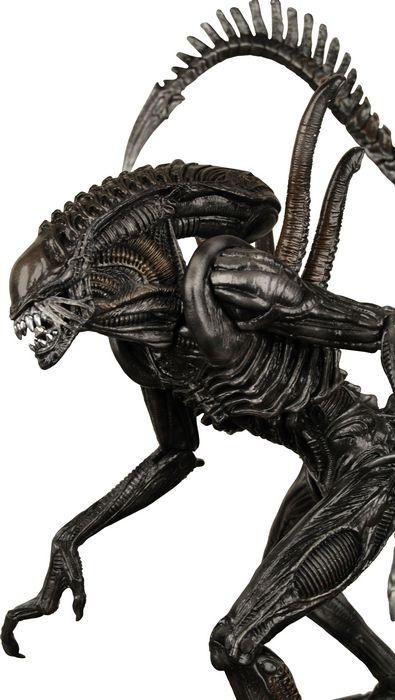 The Xenomorph action figure from Alien Vs Predator - Requiem