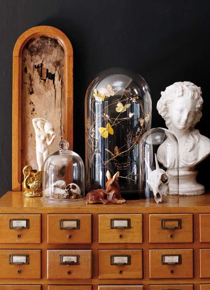How to make a home museum. Glass bell jars are a must!