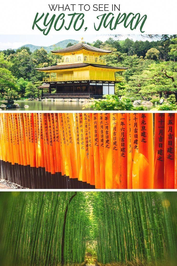 Exploring majestic temples, relaxing in calming ze…