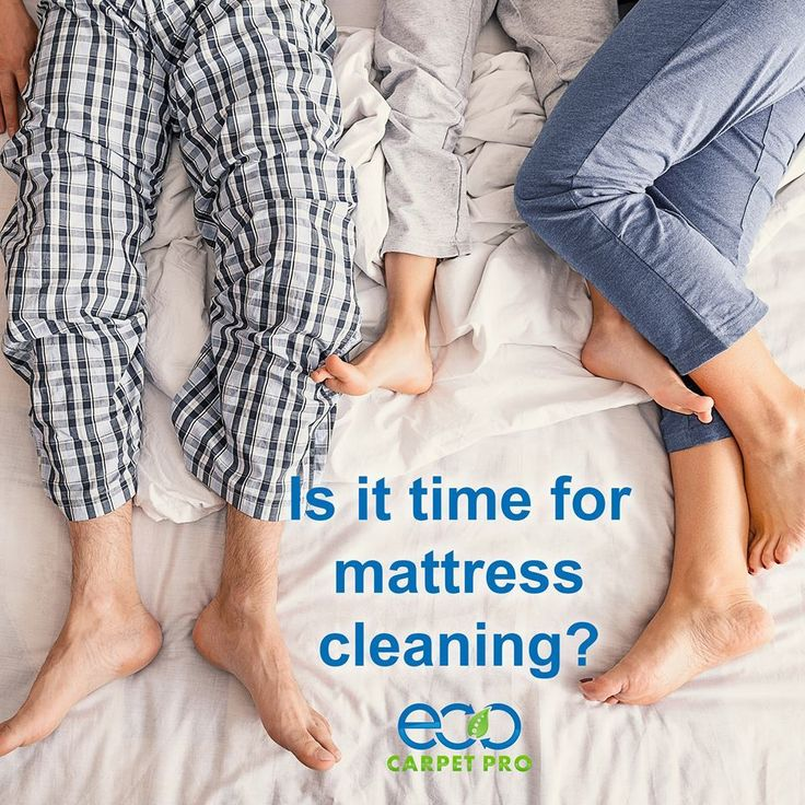 15 best Carpet Cleaners Virginia Beach VA images on