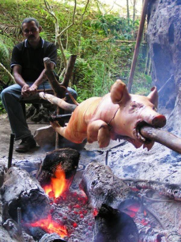 Roast pig, Cuba