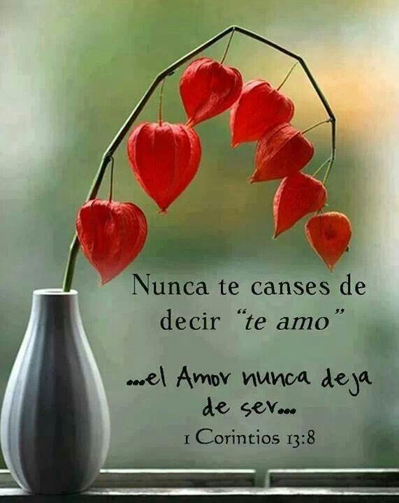Te amo...el Amor nunca deja de ser...