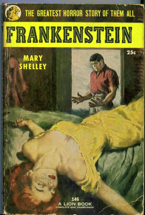 a summary of frankenstein a novel by mary shelley Life and facts of mary wollstonecraft godwin, who at 16 met 21 year old poet percy shelley, resulting in the writing of frankenstein.