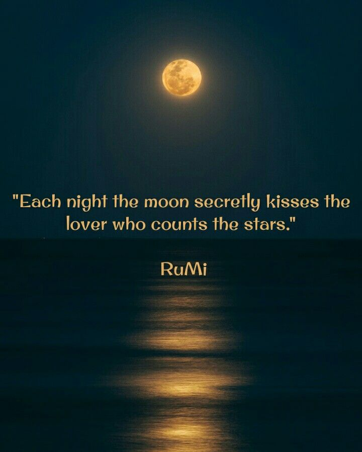 Pin By Cindy On Quotes Moon Quotes Rumi Quotes Journey Quotes