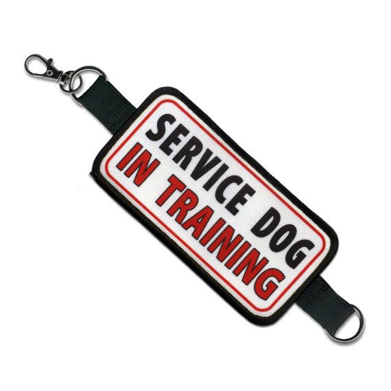 Service Dog In Training Alert Warning Double Patch Leash Wrap $17.00 USD