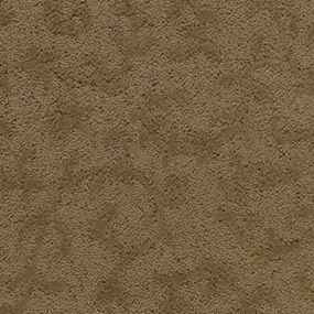 Softique Carpet By Alexander Smith Meandering Vine - Vancouver, Wa - Wholesale Carpet Outlet