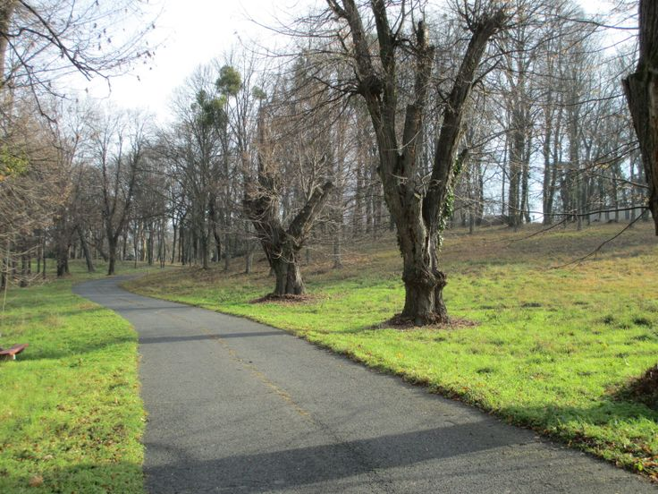 kastély park