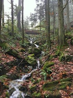 Cascade Falls Regional Park in Mission, BC