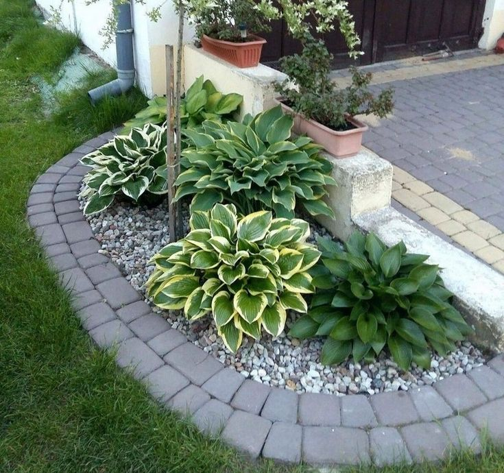 14 Small Yard Landscaping Ideas To Impress: 20+ PLAIN FRONT YARD LANDSCAPING IDEAS FOR YOUR GARDEN
