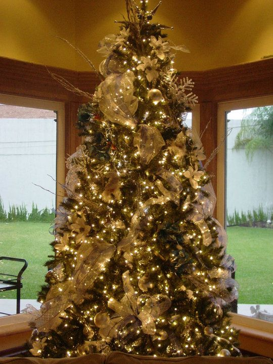 Houston Tx Christmas tree rentals by Home Office Houston ...
