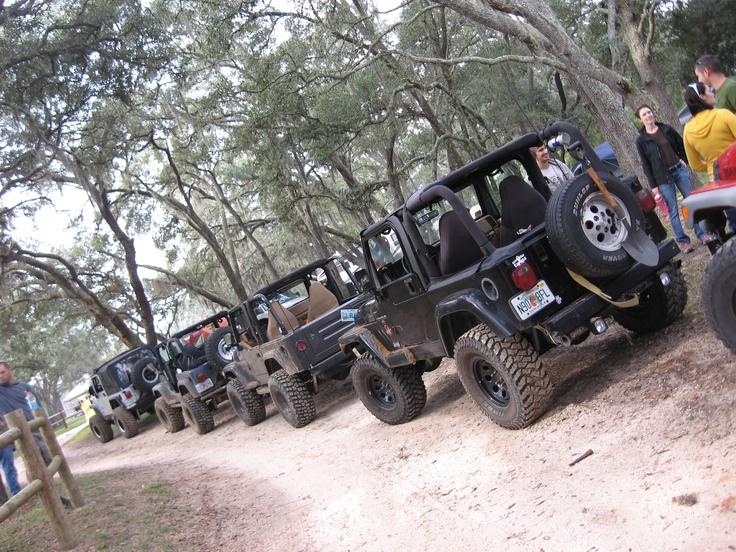 Jeep trail ride, Ocala Forest, Florida | Jeep | Pinterest ...