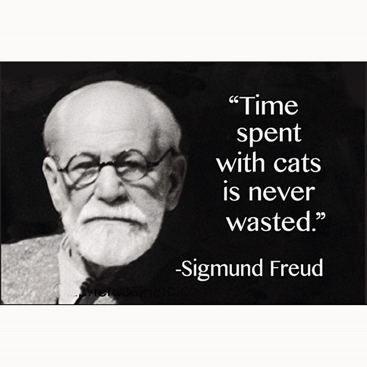 Fucked according to freud, small tits