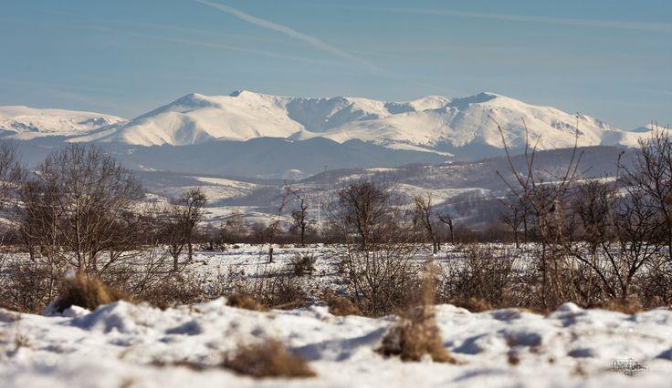 https://flic.kr/p/QSY8D1 | Carpathians