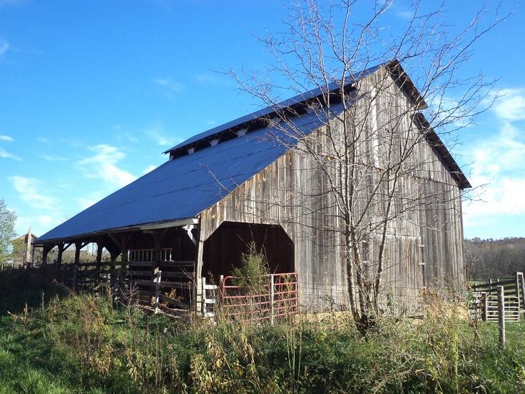 Southern Missour barn.  Photo taken by Renee Adams Werth on 27 October 2012.