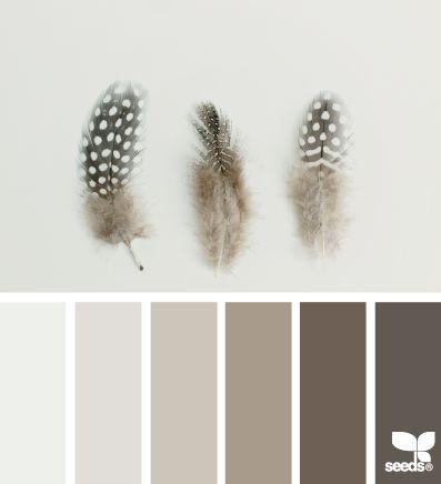 feathered tones | design seeds | Bloglovin'