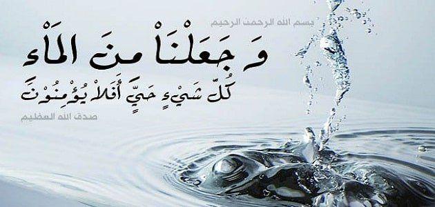 بحث عن اهمية الماء للكائنات الحية Arabic Calligraphy Black Pink Art