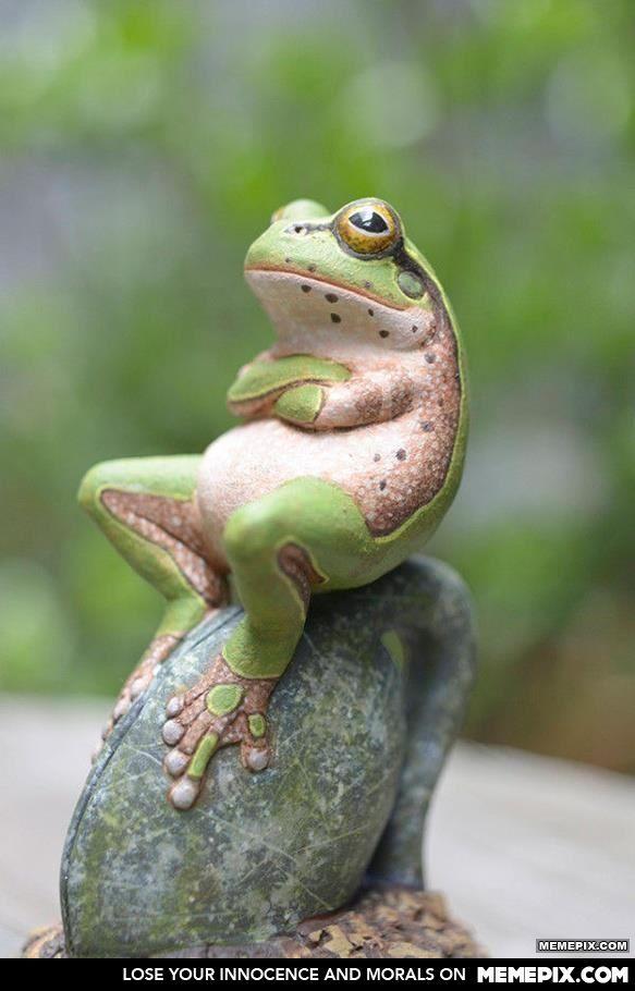 Procrastinating Frog