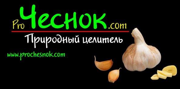 Муждей ( молдавский чесночный соус )