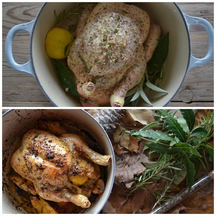 ricetta del pollo ripieno con limone