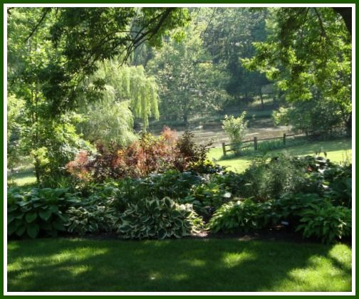 c017286550a369cb45c90392ed38855b  hosta gardens patio gardens
