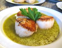 This sea scallop recipe uses New England sea scallops, seared simply and served with a parsley-butter-white wine sauce.