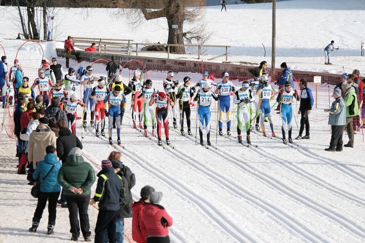 Crosscountry joung racer in Brentonico, Trento