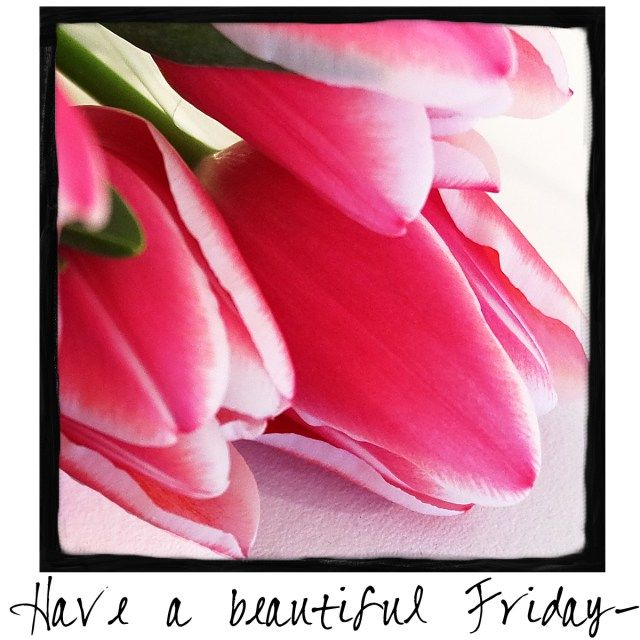 Have a Beautiful Friday! Come visit A Warm Hello for a new graphic message you can download and share with your friends and followers each day of the week!