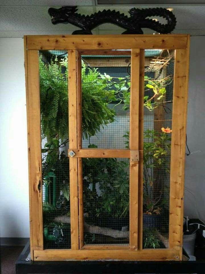 37 Best Diy Chameleon Enclosure Vivarium Images On