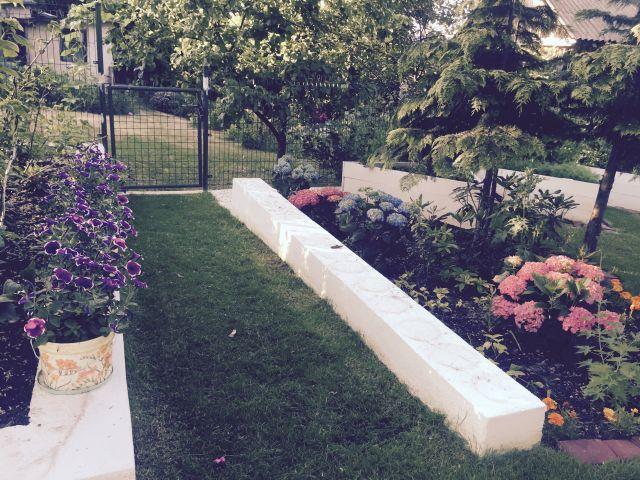 fioletowe petunie w doniczkach decoupage, hortensje pod tują ------------------------------ purple petunia in decoupaged flowerpots, hydrangea under a thuja