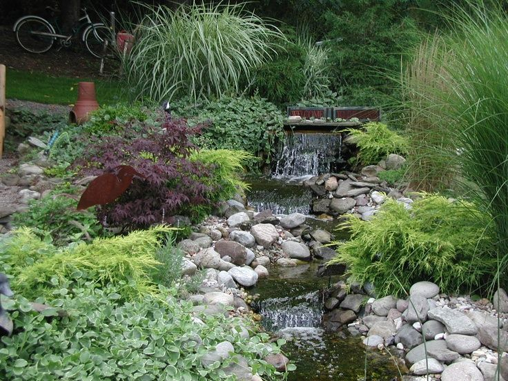 62 best country cottage gardens images on pinterest for Pond shade ideas