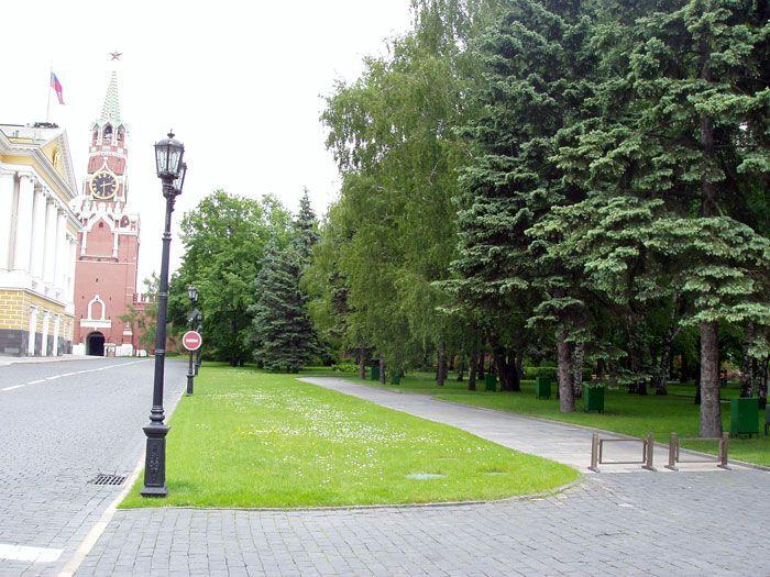 Taynitsky Gardens-3.jpg