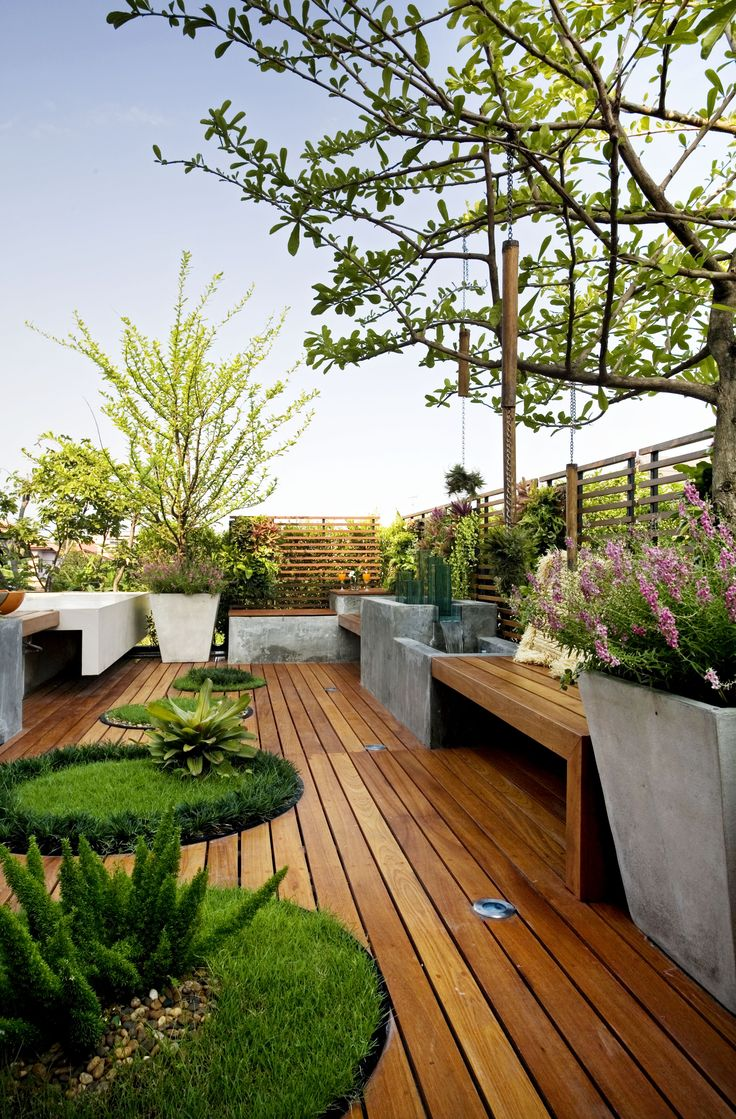 Roof deck design. love how the wood is used here (concrete, wood, grass)