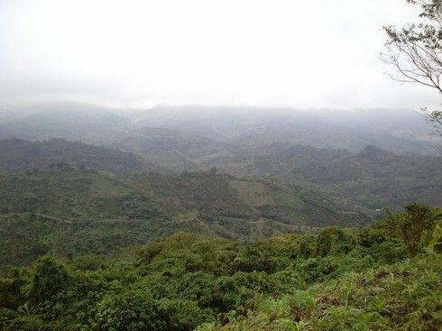 LA HERMOSA HUASTECA HIDALGUENSE EN LOS LIMITES DE SAN LUIS POTOSI