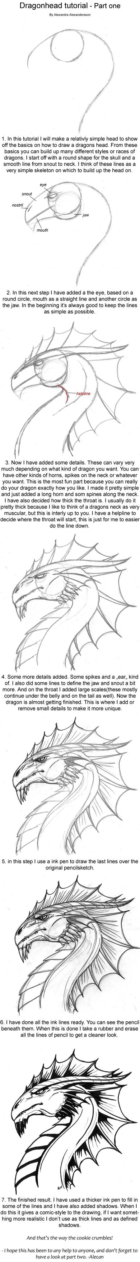 Dragonhead tutorial part one by alecan deviantart com on deviantart