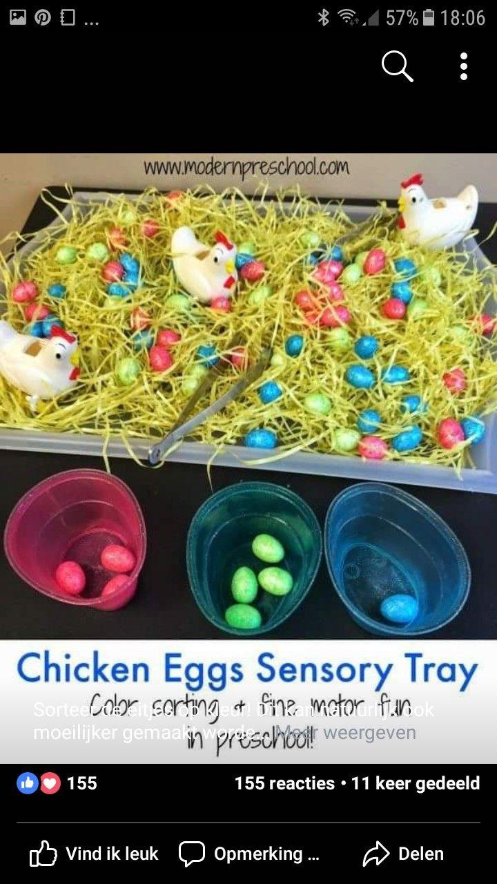 Chicken egg sorting sensory table