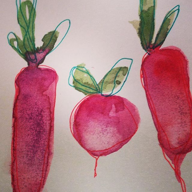My wonderful Mimi (mother in law) suggested I draw some veg.... We both love radishes .. So here we go super fast sketch for super fast snack! Love these #fastdrawing #fastsnack #radish #red #ink #moleskine #food #theydrawtheycook #irish #igersdublin