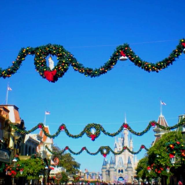 39 Best Holiday Celebration In Orlando Images On Pinterest