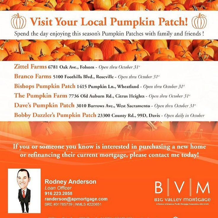 Harvest fun! Pumpkin patch locations for the Greater Sacramento Valley area via Rodney Anderson of Big Valley Mortgage    via Instagram http://ift.tt/2erm1sq  IFTTT Instagram