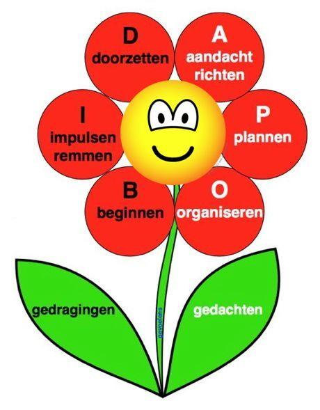 Een bloem waarin zes belangrijk executieve functies staan. Een mens kan pas goed tot bloei kan komen als deze goed functioneren. De smiley in het hart vertegenwoordigt de functie die de zes andere met elkaar verbind. Ook het G-denken opgenomen (gebeurtenissen, gedachten, gevoelens, gedragingen, gevolgen) is opgenomen. De zes belangrijk executieve functies kunnen worden onthouden aan de hand van het woord BIOPAD.