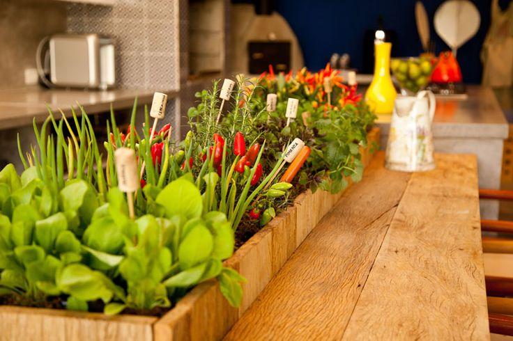 Cozinha gourmet com horta de temperos de um lado e mesa do outro...