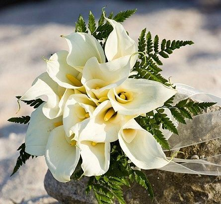 Beach Wedding Flowers - Pictures of Calla Lily Bridal Bouquets [Slideshow]