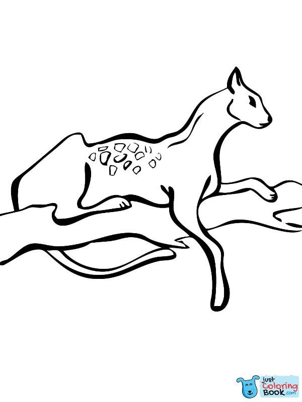 Serval auf einem Baum Malvorlagen kostenlos druckbare Malvorlagen in Springen …   – Cat Coloring Pages