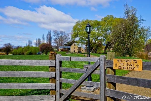 Nant Estate Whisky Distillery, Bothwell Tasmania. Article and photo by Carol Haberle for www.think-tasmania.com