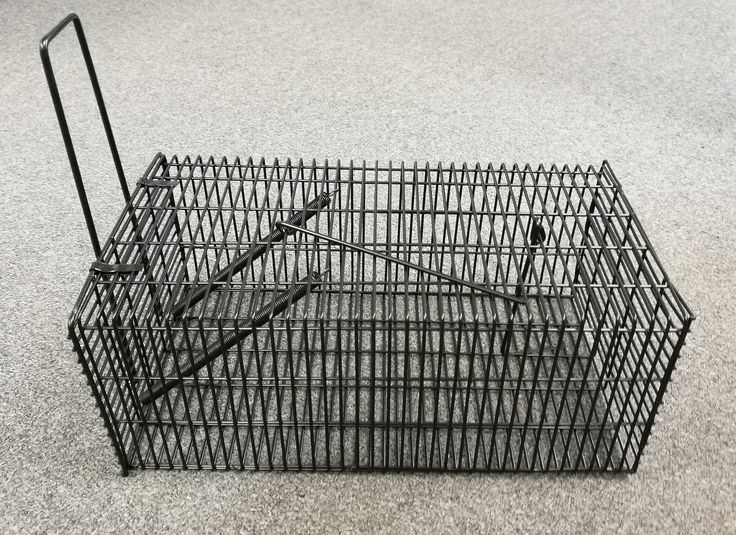 Black Rat Trap/Cage