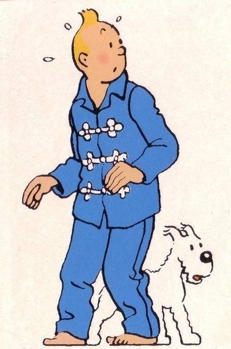 Tintin in Chinese pyjamas with Snowy • Tintin, Herge j'aime