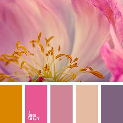 anaranjado y beige, anaranjado y carmesí, anaranjado y violeta, colores violeta y frambuesa, frambuesa y anaranjado, frambuesa y beige, frambuesa y rosado, frambuesa y violeta, rosado y anaranjado, rosado y carmesí, rosado y violeta, violeta y anaranjado, violeta y beige, violeta y