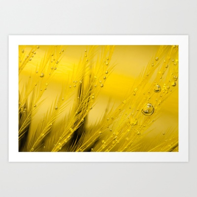 A Memory To Come Art Print by Marisa Johnson    #macro #yellow #feather
