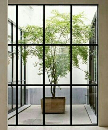 Pots & Planters | Wood boxed tree in courtyard
