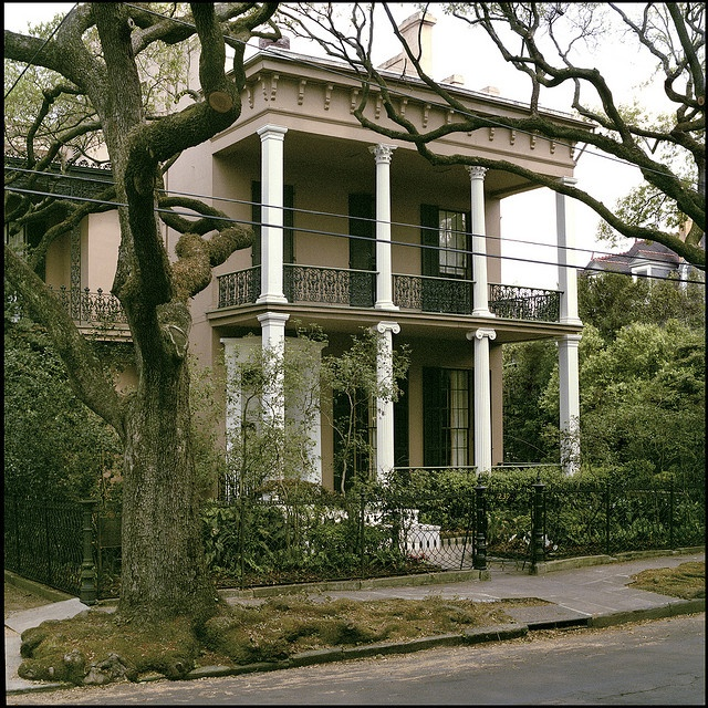 56 best images about new orleans garden district on - Parking garden district new orleans ...